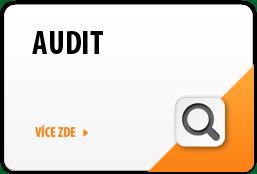 Audit účetní závěrky, auditor